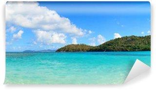 Fototapeta Winylowa Wyspy Dziewicze plaży