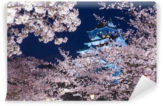 Vinylová Fototapeta Zámek Osaka, Osaka, Japonsko na jaře