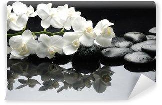Vinylová Fototapeta Zblízka bílá orchidej s kapkami vody kámen