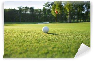 Vinylová Fototapeta Zblízka golfový míček na zelené