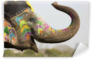 Vinylová Fototapeta Zdobené slon slona festivalu v Jaipur