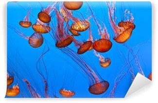 Vinylová Fototapeta Želé ryby v modrém oceánu