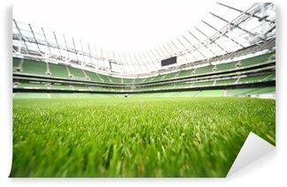 Vinylová Fototapeta Zelená-sekání trávy ve velkém stadionu v letní den