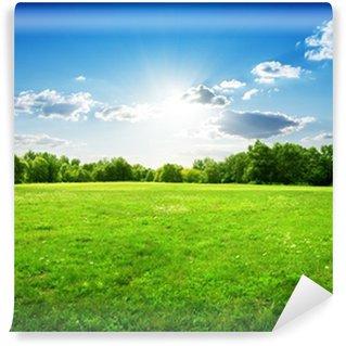 Vinylová Fototapeta Zelená tráva a stromy