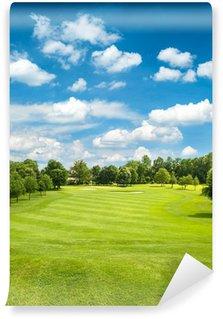 Vinylová Fototapeta Zelené golfové hřiště a modré zatažené obloze