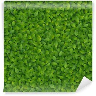Vinylová Fototapeta Zelené listy textury
