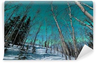 Vinylová Fototapeta Zelené pruhy polární záře nad zimní tajgy