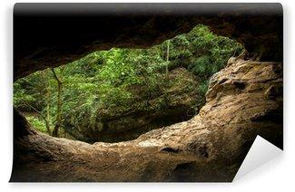 Vinylová Fototapeta Zelené stromy pohled z vnitřku jeskyně