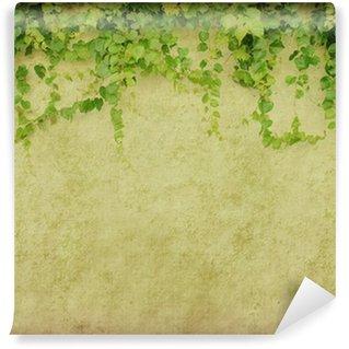 Vinylová Fototapeta Zelený břečťan na staré grunge starožitných papír textury