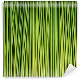 Vinylová Fototapeta Zelený list