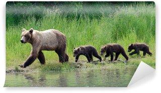 Vinylová Fototapeta Žena Aljašský medvěd hnědý s mláďaty