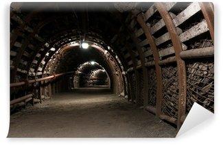 Vinylová Fototapeta Zesílená tunel v uhelném dolu