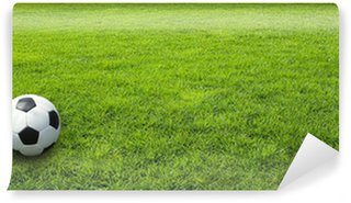 Fototapeta Winylowa Zielona łąka trawa