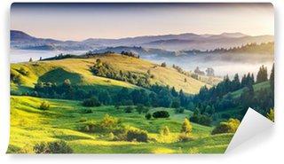 Fototapeta Winylowa Zielone pagórki z górami w oddali