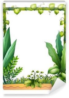 Fototapeta Winylowa Zielone rosliny