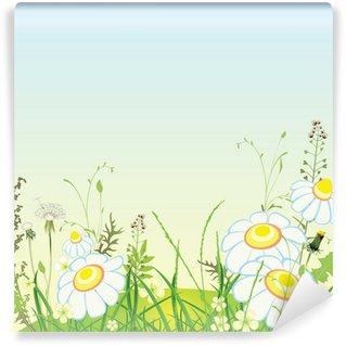 Fototapeta Winylowa Zielony krajobraz, kwiaty i łąka, trawa, ilustracji wektorowych