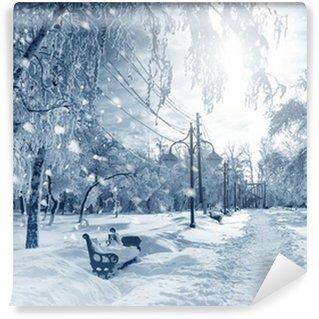 Fototapeta Winylowa Zima charakter, śnieżyca