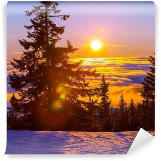 Vinylová Fototapeta Zima v horách