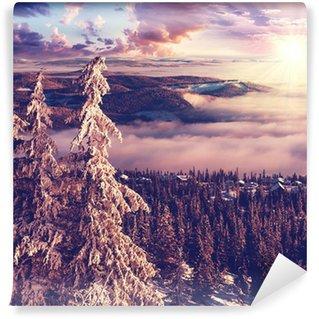 Vinylová Fototapeta Zima v Norsku