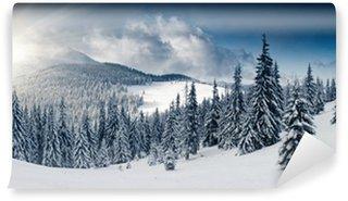 Fototapeta Winylowa Zima