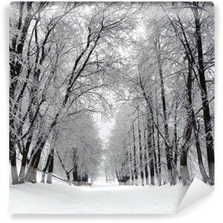 Vinylová Fototapeta Zimní alej
