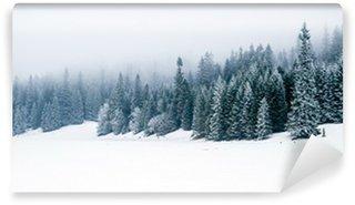 Vinylová Fototapeta Zimní bílý les se sněhem, vánoční pozadí