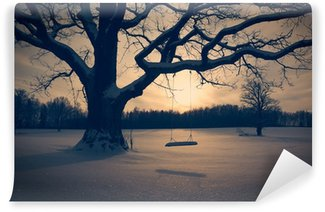 Vinylová Fototapeta Zimní krajina s Abandoned Tree Swing