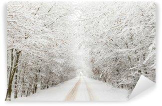 Vinylová Fototapeta Zimní krajina se silnicí obklopen stromy