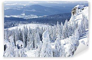 Vinylová Fototapeta Zimní krajina ve velkém Javoru, Bavorský les