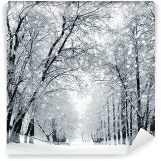 Fototapeta Winylowa Zimowe krajobrazy, śnieżyca w parku