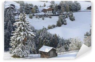 Fototapeta Winylowa Zimowy krajobraz alps