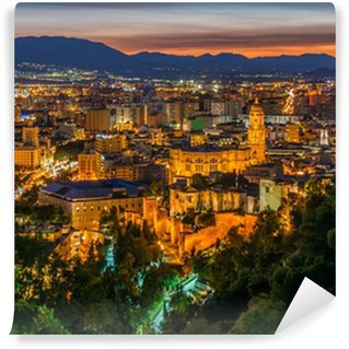 Vinylová Fototapeta Zobrazit na Malaga City v noci, Andalusie, Španělsko