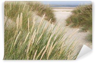 Vinylová Fototapeta Zobrazit na pláži od písečných dun v Nizozemsku