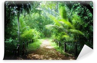 Vinylová Fototapeta Způsobem v džungli Seychelské ostrovy