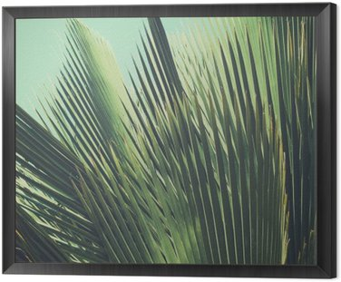 Abstract tropical vintage background. Palm leaves in sunlight.