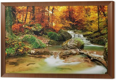 Framed Canvas Autumn creek woods with yellow trees