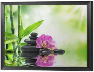 Framed Canvas Background spa - orchids black stones and bamboo on water