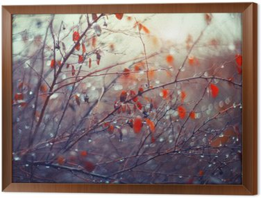 Framed Canvas background with branches and raindrops