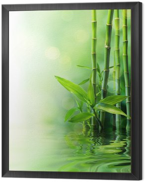 Framed Canvas bamboo stalks on water - blurs
