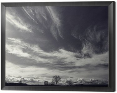 Framed Canvas black and white photo autumn landscape