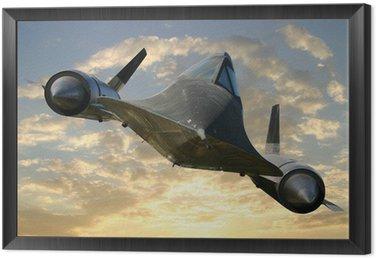 Framed Canvas blackbird