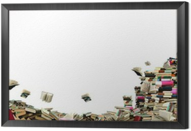 Framed Canvas Book sellout