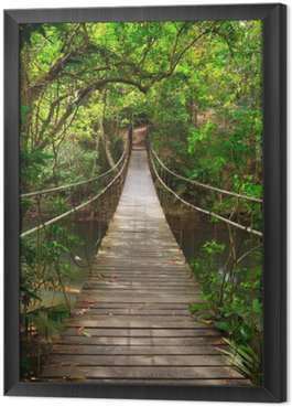 Bridge to the jungle,Khao Yai national park,Thailand Framed Canvas