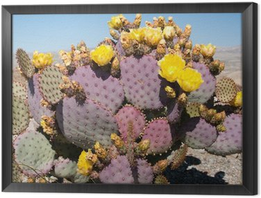 Framed Canvas Cacti with yellow flowers
