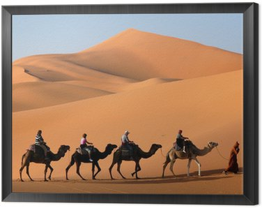 Framed Canvas camel caravan in the sahara desert