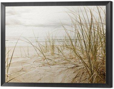 Close up of a tall grass on a beach during cloudy season Framed Canvas