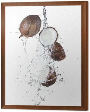 Framed Canvas Cracked coconuts in water splash on white