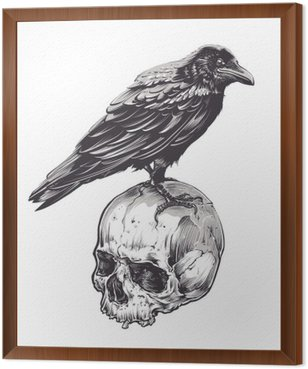 Framed Canvas Crow on Skull