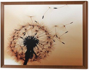 Dandelion Framed Canvas