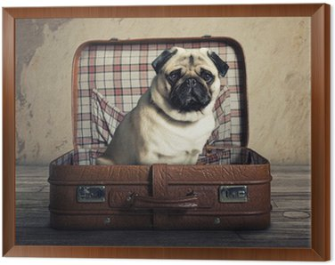 Framed Canvas Dog in a Case